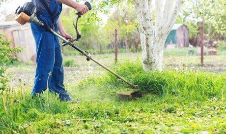 Remise en état de jardin